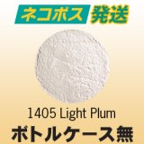 【ケース無】パウダー50g 1405 Light Plum ネコポスOK